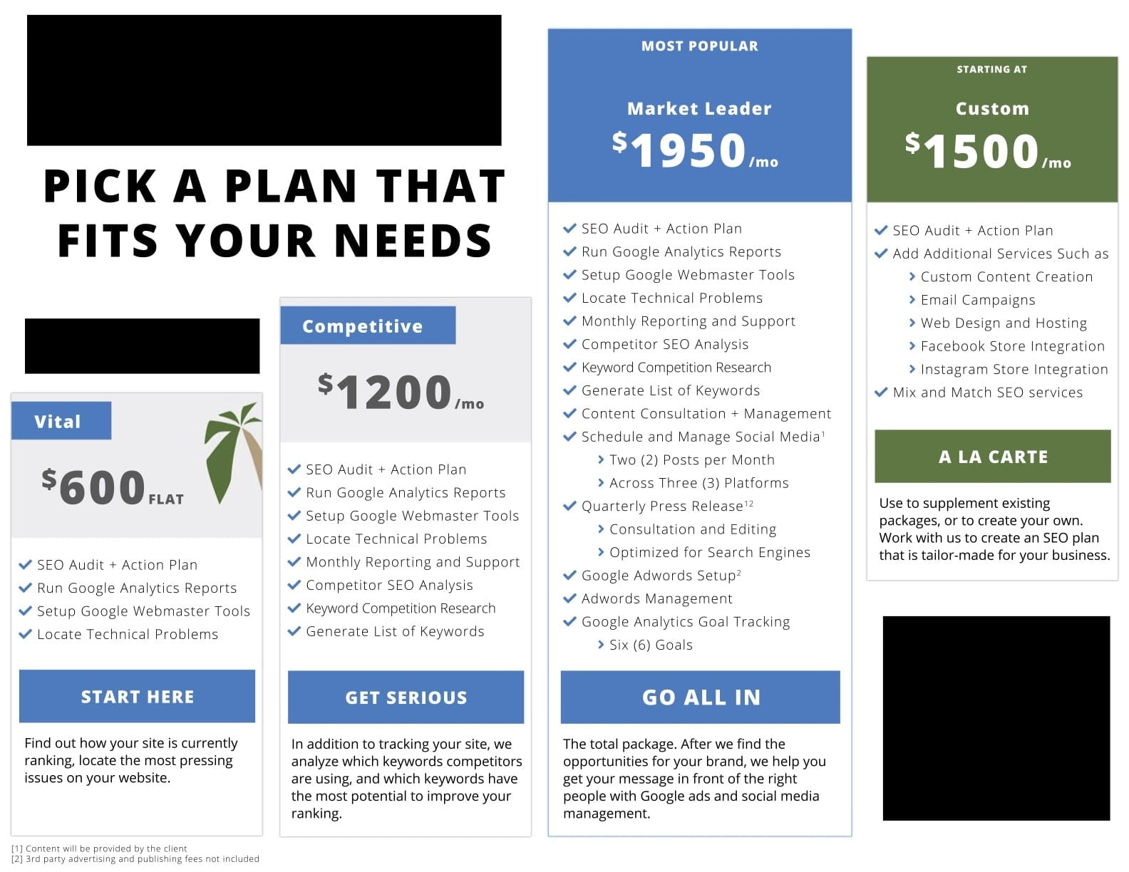 picture of seo plans package