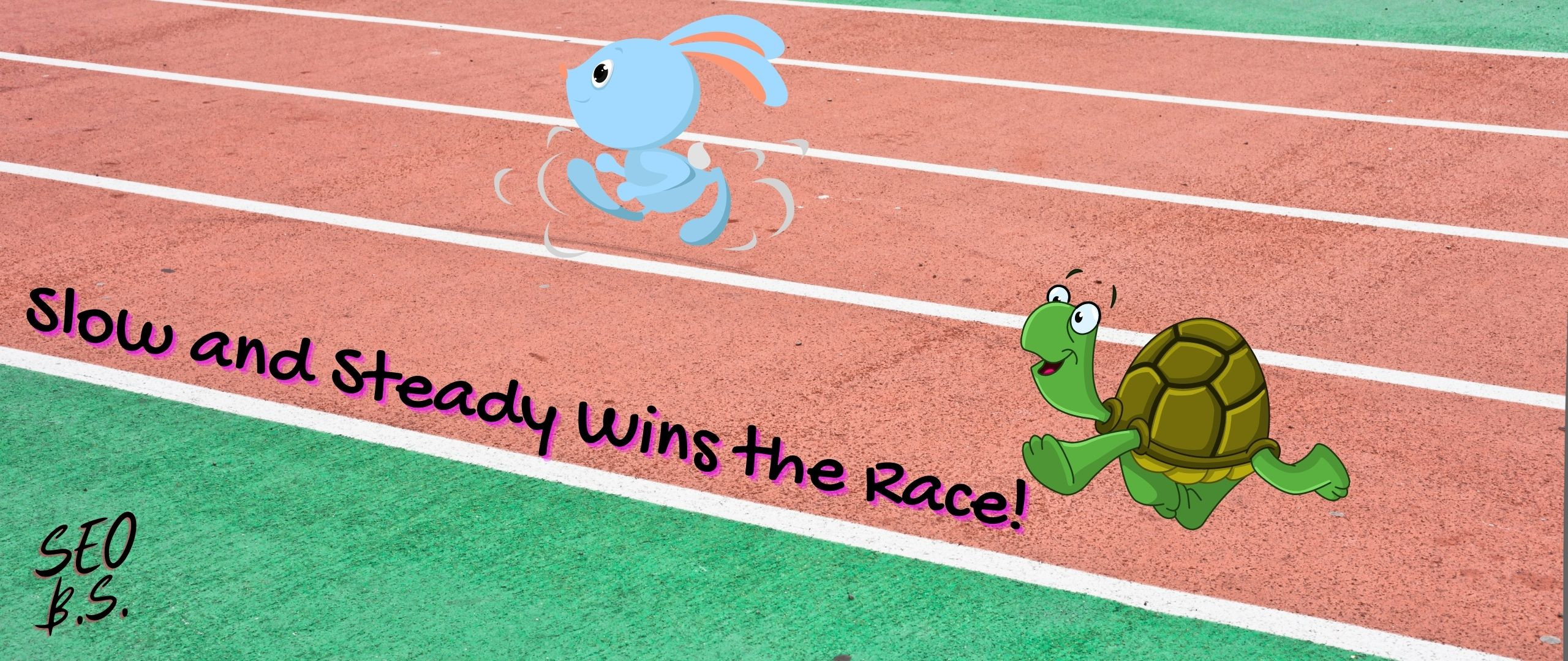 picture of Slow and Steady Wins the Race